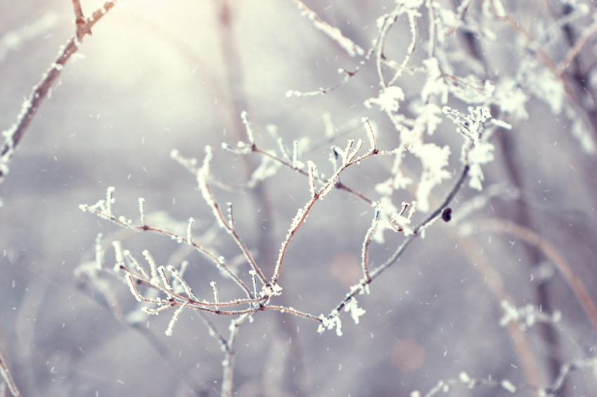 It gets cold _____ winter.